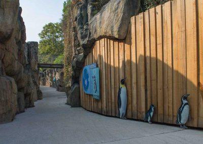 Pinguinanlage, Frankfurt
